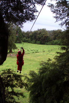 Zip Line Adventures On The Slopes Of Osorno Volcano