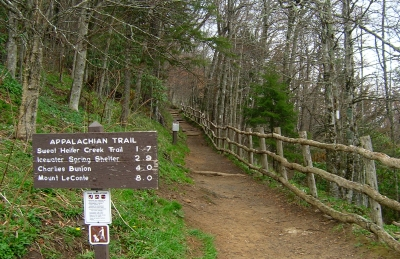 Why Fly When You Can Walk? Hiking The Length Of The Appalachian Trail