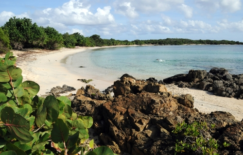 Photo Essay: Vieques, The Puerto Rican Island Youve Never Heard Of