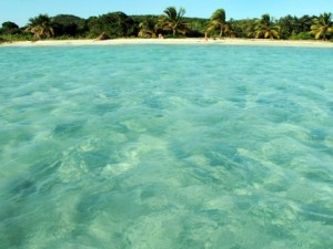 13-vieques