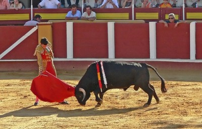 Im Not Sad To See Bullfighting Go In Spain