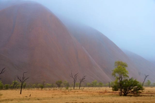 Uluru In The Rain: How The Worst Weather Can Make For The Best Vacation