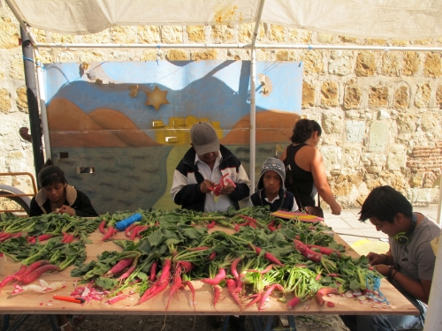 How A Radish Festival In Oaxaca Made Me Feel Like A Mexican