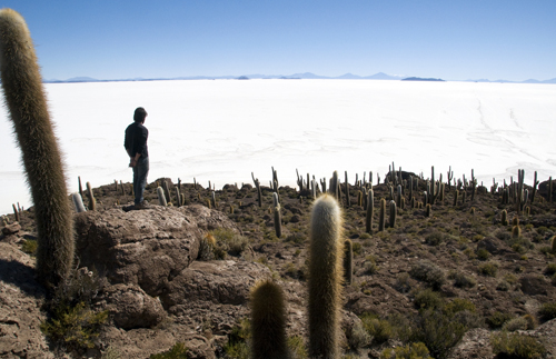 The Driest Place on Earth: From Bolivia's Salt Flats To Chile's Atacama Desert