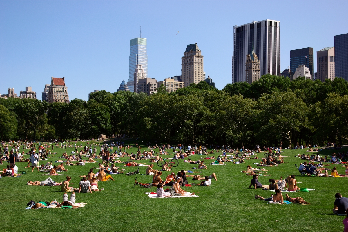 Top 10 free things to do in new york city this summer for Things to doin nyc