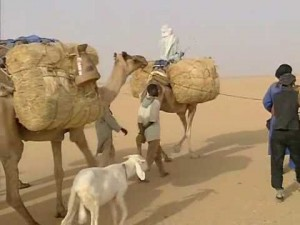 Video: Tracking Caravans In Niger