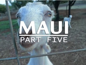 Travel_Guide_to_Maui_Part_FIVE