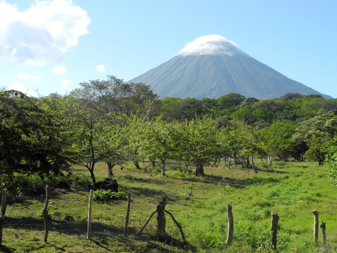 Ducks, Drugs And Dance Meditation: My Failed Stay At A Nicaraguan Permaculture Farm