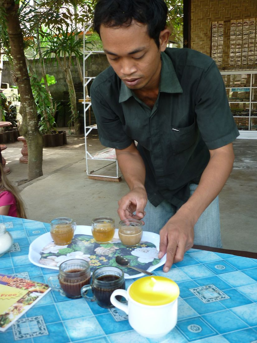 Facing The Feces Factor: Tasting My First Cup Of Kopi Luwak Coffee