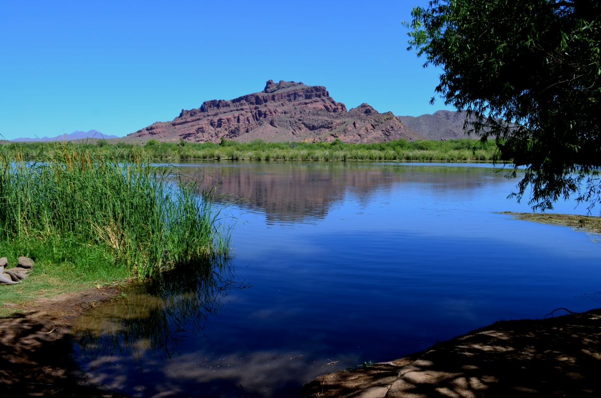 Red Mountain At Salt River