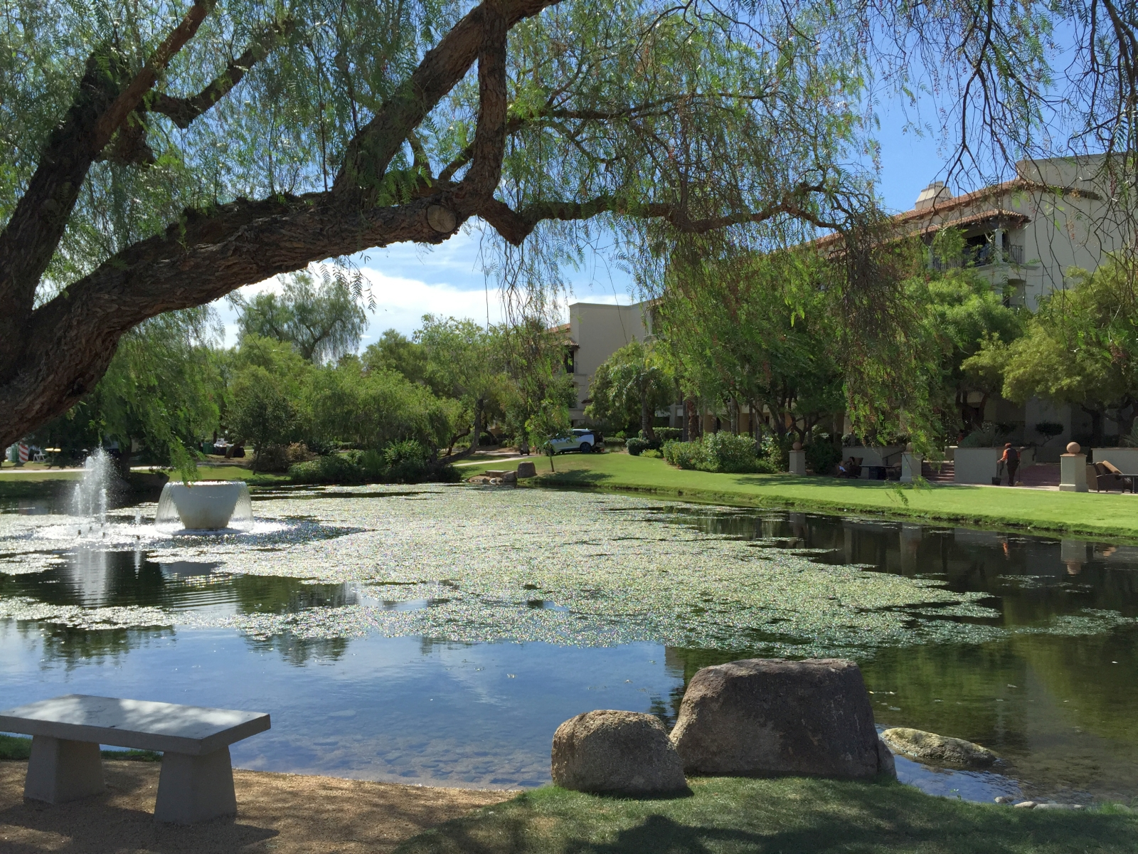Fairmont Princess Scottsdale 1