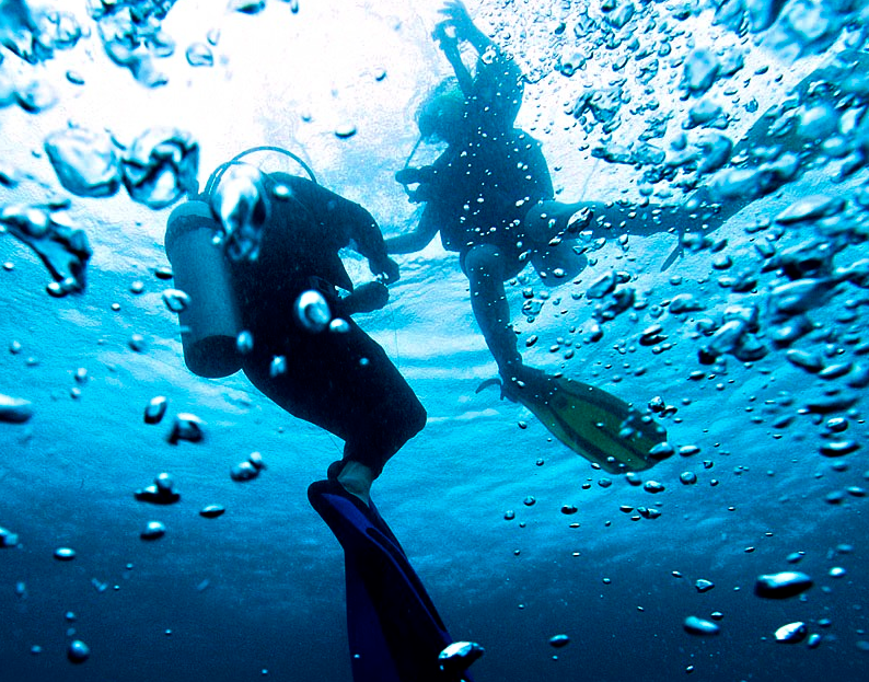 "Going ""Deep"" In Indonesia: Diving The Gilis"
