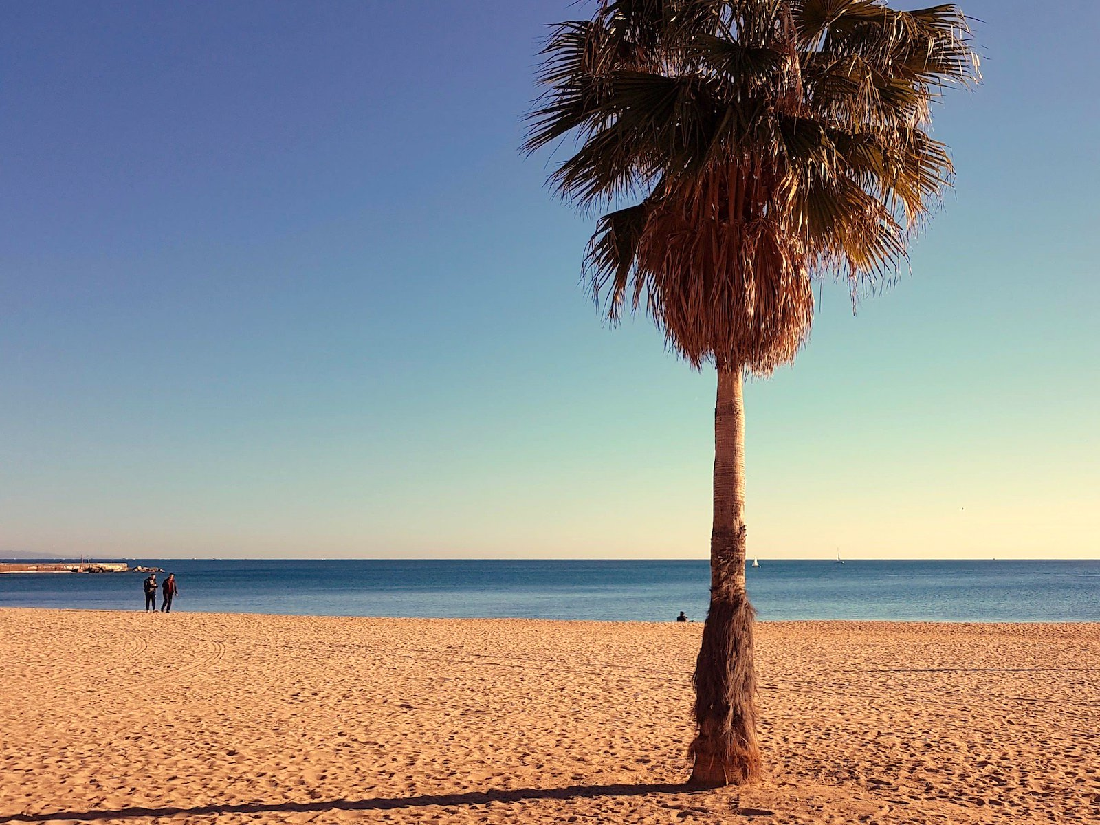 10 Things to Do in Barcelona in the Winter