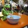 Kermit The Frog: He's Been More Places Than You