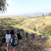 An Unconventional Birthright: One Cynic's Journey Through Israel